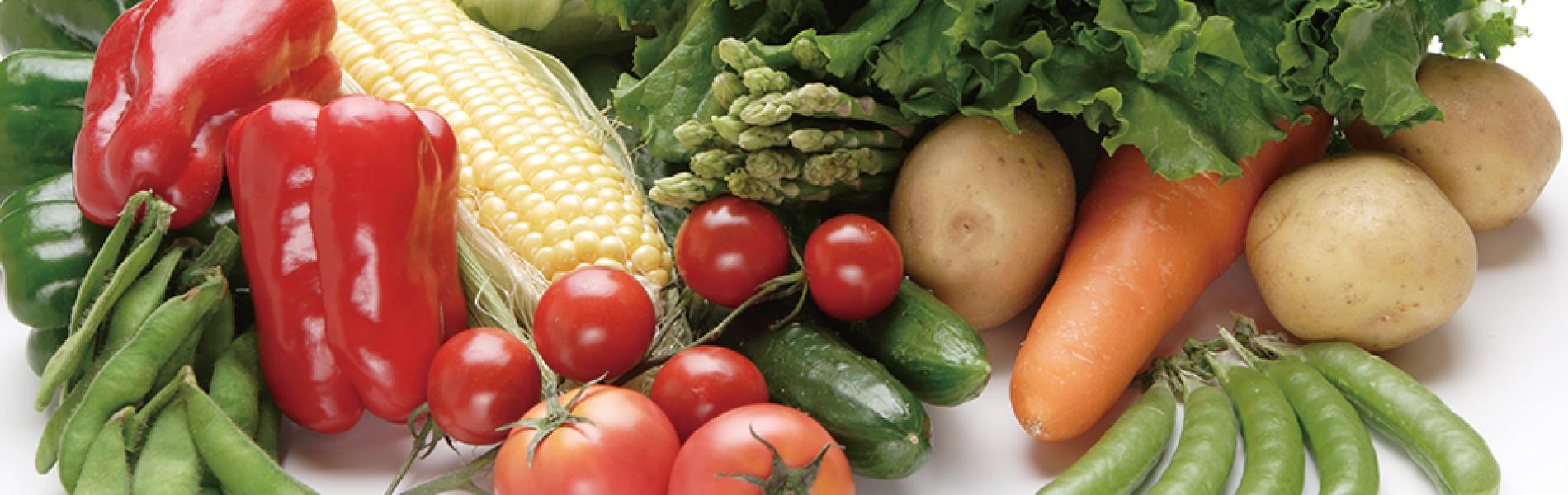 農産物の生産、販売